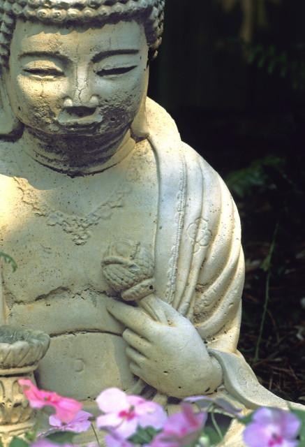 Backyard Buddha edit